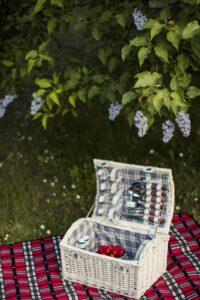picnic-i-naturen