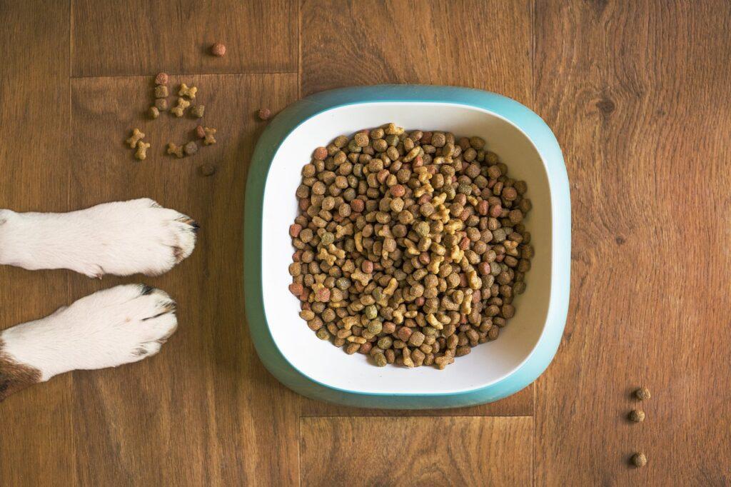Hundeskål med mad