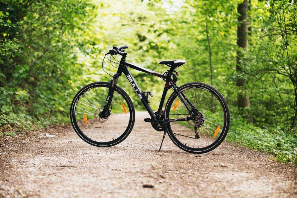Cykel i skov